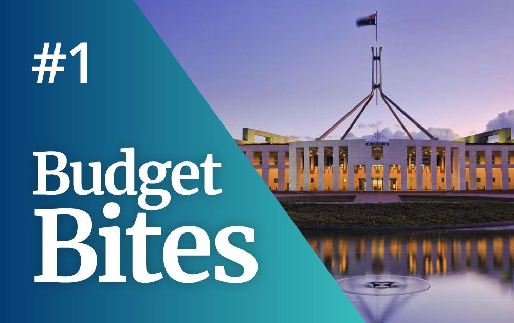 Budget Bite 1