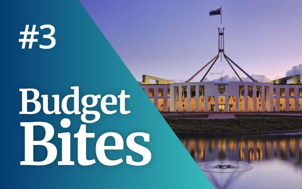 Budget Bite 3